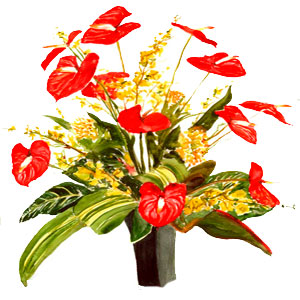 Christmas Flowers to Chennai