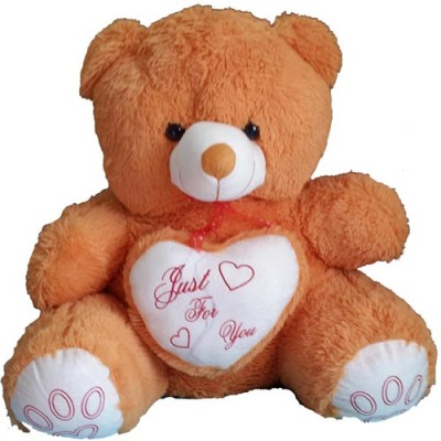 Online Softtoys and Flowers to Chennai