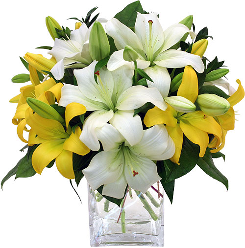Send flowers to chennai lilies flower delivery in chennai flowers anniversary flowers to chennai mightylinksfo